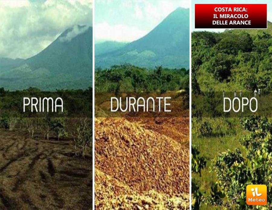 COSTA RICA: il miracolo delle arance