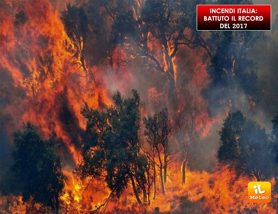 Un 2017 triste per quanto riguarda gli incendi