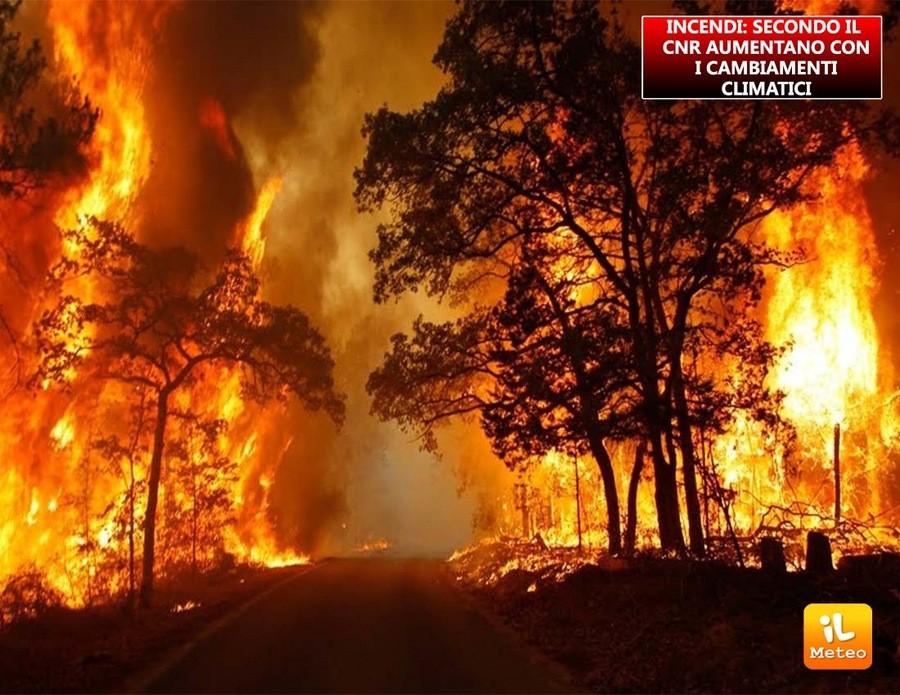 Incendi sempre più devastanti nei prossimi anni secondo il CNR