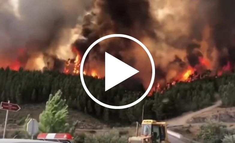 Portogallo, incendi devastano i boschi della zona centrale