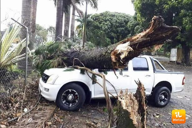 Danni ingenti a seguito del passaggio del ciclone Berguitta