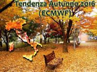 Meteo ITALIA: Autunno 2016, come proseguirà? La tendenza secondo ECMWF