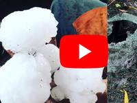 Meteo Cronaca Diretta: AUSTRALIA, Grandinata apocalittica Distrugge Tutto nel Queensland, Chicchi di 15 Cm. VIDEO