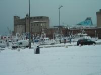 METEO STORIA: nevicata a Livorno