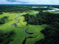 CAMBIAMENTI CLIMATICI: le tribù indigene sono le più colpite, ecco perché