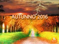 Meteo | AUTUNNO 2016 con super NEBBIA al NORD e caldo al SUD? Ecco cosa dice ECMWF
