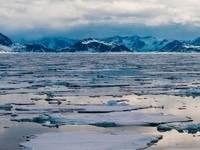 Meteo: una nuova MALATTIA incombe per colpa dei CAMBIAMENTI CLIMATICI. Ecco di cosa si tratta