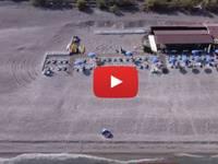 Meteo Cronaca DIRETTA: SICILIA, la CENERE dell'ETNA Annerisce la Sabbia della Spiaggia di MASCALI a CATANIA. VIDEO
