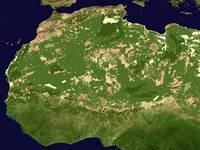 Meteo: il DESERTO del SAHARA diventerà una GRANDE FORESTA. Ecco QUANDO e perché