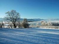 Paesaggio ghiacciato