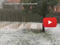Meteo Cronaca DIRETTA: VENETO, Spaventosa BUFERA di GRANDINE devasta i VIGNETI in Provincia di TREVISO. Il VIDEO