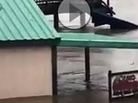 Meteo CRONACA diretta VIDEO: USA, grande paura in TEXAS, il fiume travolge tutto. Ecco le immagini