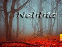 METEO ~ Nord nella NEBBIA, effetto talpa su tante regioni [VIDEO]