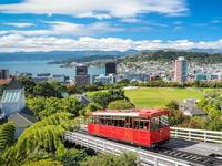 Emergenza in NUOVA ZELANDA