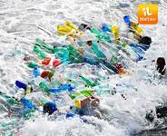 Iole di plastica, un pericolo per gli animali