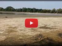 Meteo CRONACA DIRETTA: a TORINO il fiume PO SCOMPARE! E' ALLARME SICCITA'. Il VIDEO