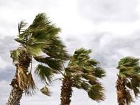 Meteo: VENTI in INTENSIFICAZIONE nei PROSSIMI GIORNI, in arrivo RAFFICHE fino a 80 km/h. Le REGIONI a RISCHIO