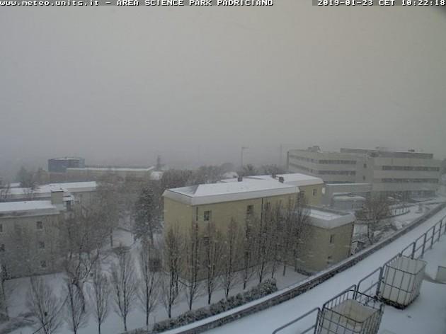Situazione in atto a Trieste - NEVE